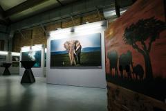 proWIN Naturschutz-Ausstellung LEBENSWELTEN